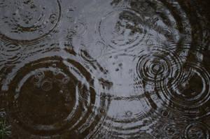 RainPuddles 2013-07-04 42 by skydancer-stock