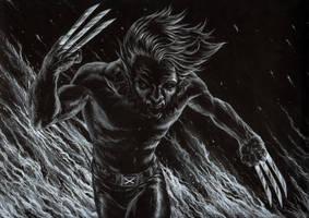 Wolverine by graphitenightmare