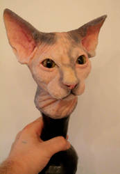 Silicone Sphynx Cat by TomsCreatures