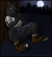 Livestream Commission: Shadow Wolf Transformation by JakkalWolf
