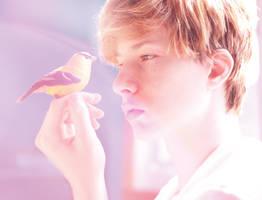 bird by forgottenx
