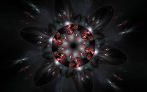 blackred flower by Andrea1981G