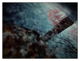 Reflection...... by gintautegitte69