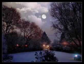 Backyard evening.... by gintautegitte69
