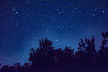 Garden of Stars by OfTheDunes