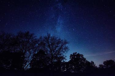 Garden of Stars 2 by OfTheDunes
