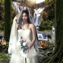 The Bride by Elchanan