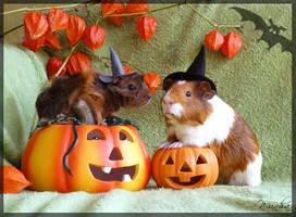 Halloween by wunha
