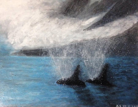 Paired whales  by jmbateman