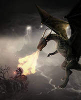 Dragon vs Warrior 2 by RandomArtist77
