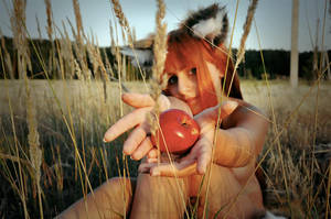 Spice and Wolf - Horo 05 by CrazyRabbit
