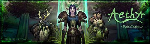 Dualspec Druid Sig by Firebli9ht