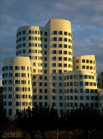 Gehry Buildings by serel