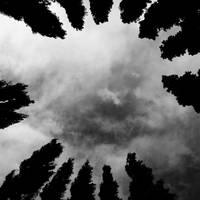 Dark Circle by serel