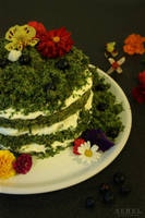 Moss Cake with edible flowers by serel