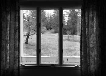 Window by TamperdSoul