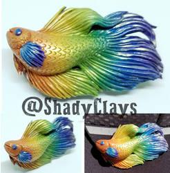 Rainbow betta fish by Helix-Wing