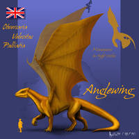 Anglewing by Kalia24