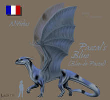 Pascal's Blue by Kalia24