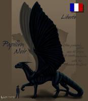 Papillon Noir by Kalia24
