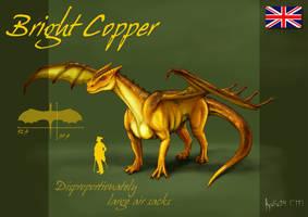 Bright Copper by Kalia24