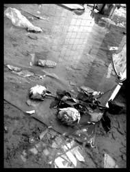 Flowers for the Dead by lunacyfreak