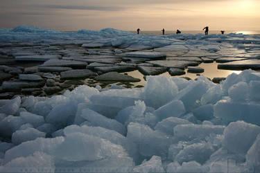 Frozen Planet by thrumyeye