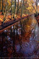 Silent Waters Deep Grounds by thrumyeye