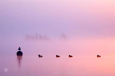 Empty Spaces IV | Sunrise in the Mist by thrumyeye