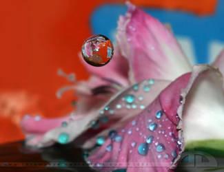 Floating Mirror by thrumyeye