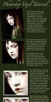 Photoshop Vexel Demo by Darkdesyre