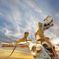 Little Lizards by FauxHead
