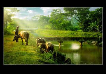 The green of Yogyakarta by pagihari