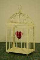 cage by Hongatar-stock