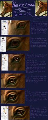 Horse Eye Tutorial by oOo-Alouette-oOo
