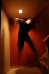Shadowed Spirit by radeona