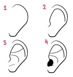 How To Draw Ears by Lily-Draws