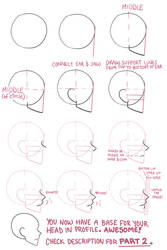 Face profile tutorial part 1 by Lily-Draws