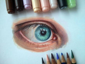 Blue Eye study - Copics Markers and Color Pencils by akdizzle