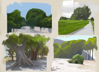 Trees studies by DanarArt