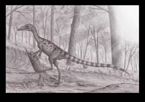 Sinosauropteryx by Steveoc86