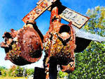 Diffused Rusted Crossing by diverse-norm