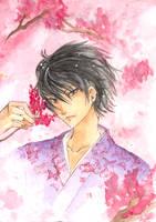 .:Sakura-Hibari Kyouya by KaikaKaze