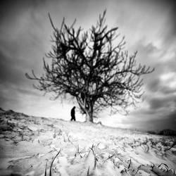 icy by MustafaDedeogLu