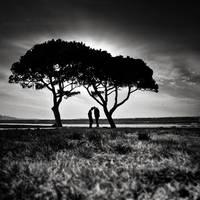 head to head by MustafaDedeogLu