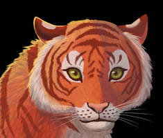 Tiger Bust by RunningSpud