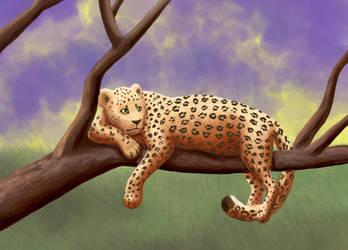 Leopard by RunningSpud