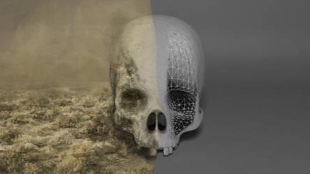 Skull by IceMan-Studio