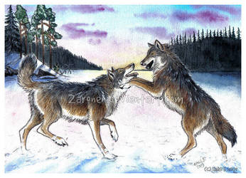 Playing wolves by Zaronen
