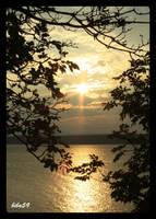 golden sunset by biba59